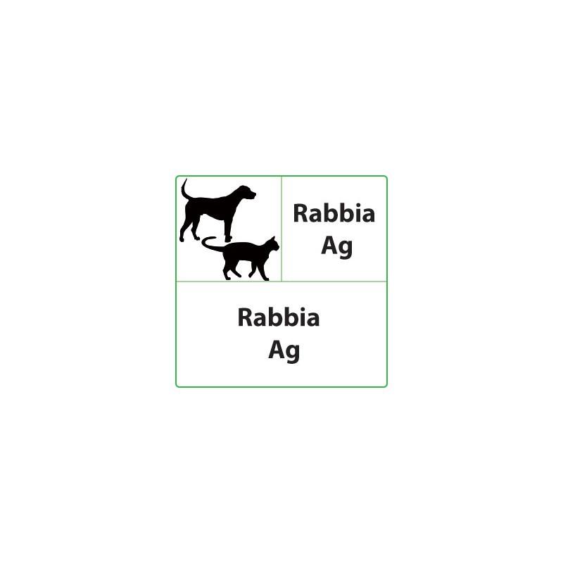 Test veterinari Rabbia per cani o gatti