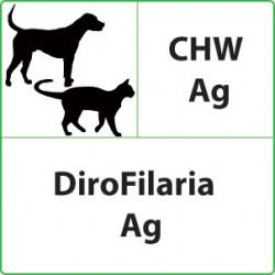Test Dirofilaria per Cani e...