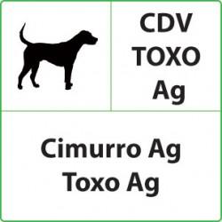 Test veterinari Cimurro + Toxoplasmosi per Cani